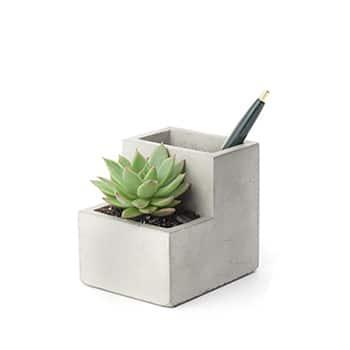 Concrete Desktop Planter - Small